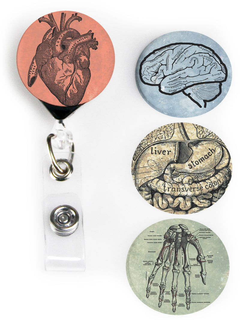 Buttonsmith® Anatomy Tinker Reel® Badge Reel – Made in USA - Buttonsmith Inc.