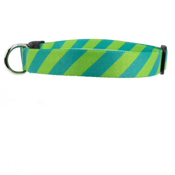 Buttonsmith Aqua Stripes Dog Collar - Made in USA