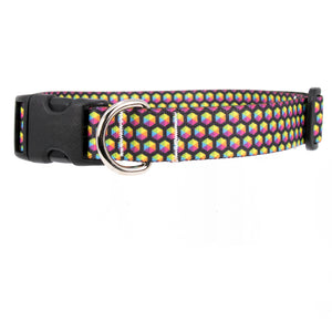 Buttonsmith Rainbow Hexes Dog Collar - Made in USA