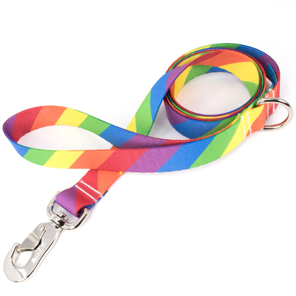 Buttonsmith Rainbow Flag Dog Leash Fadeproof Made in USA