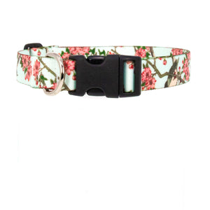 Buttonsmith Hiroshige Cherry Blossom Art Dog Collar - Made in USA