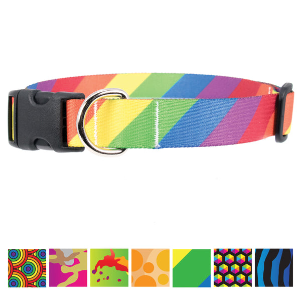 Buttonsmith Rainbow Flag Dog Collar - Made in USA