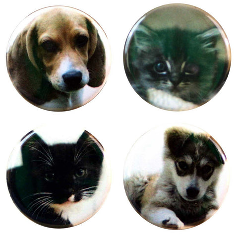 "Buttonsmith® 1.25"" Puppies and Kitties Refrigerator Magnets - Set of 4"