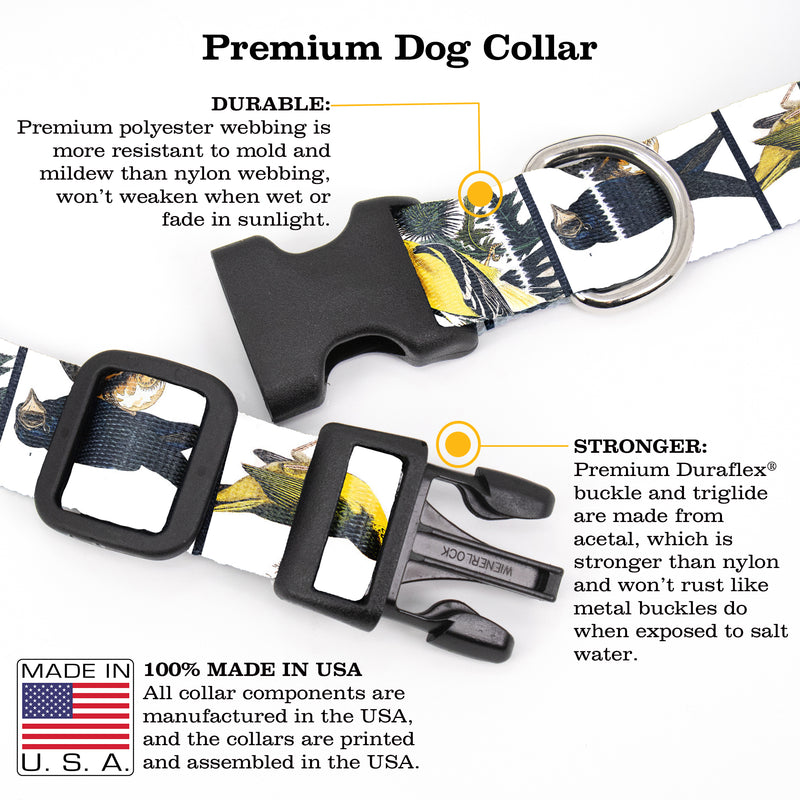 Buttonsmith Audubon Songbirds Dog Collar - Made in the USA - Buttonsmith Inc.