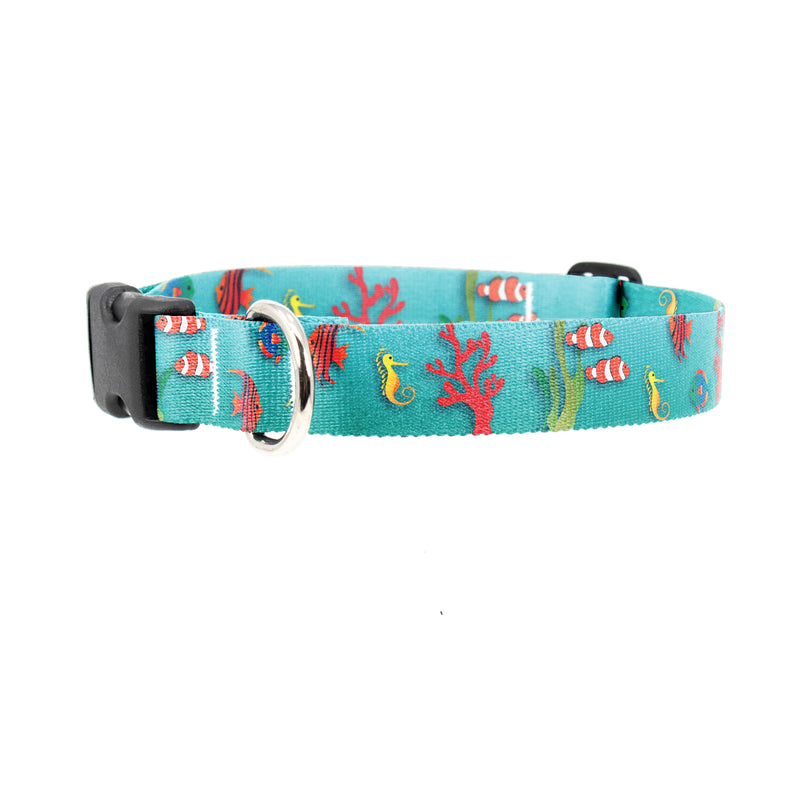 Buttonsmith Tropical Fish Dog Collar - Made in the USA - Buttonsmith Inc.