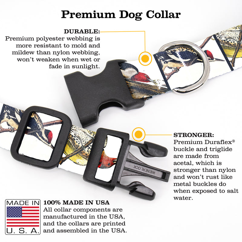 Buttonsmith Audubon Woodpeckers Dog Collar - Made in the USA - Buttonsmith Inc.