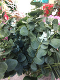 Long stem Silver Eucalyptus Spray for Wedding decor greenery