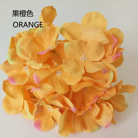 orange hydrangea head