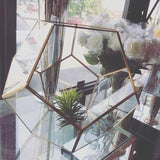 "GEOMETRIC 10.5"" X 13.5"" PLANTER GLASS BALL TERRARIUM VASE money box hexagon - Richview Glass Wedding Supplies"