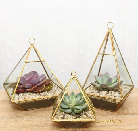 "GEOMETRIC 8"" PLANTER GLASS PYRAMID TERRARIUM VASE (Gold)-GEO1-2 - Richview Glass Wedding Supplies"