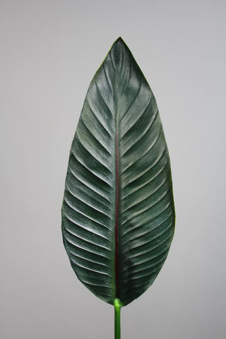 "34"" Bird of Paradise Leaf (s) real touch leaf floramatique - Richview Glass Wedding Supplies"