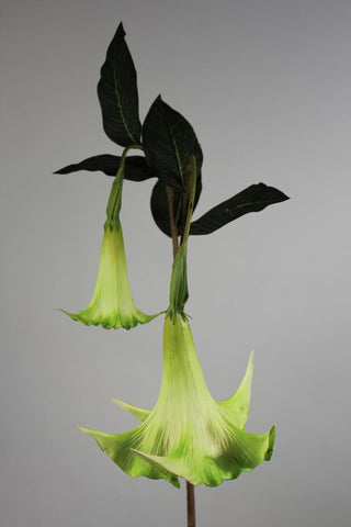 "Artificial Flower Angel's Trumpet real touch floramatique SB136 49""(Green)-ART1-27 - Richview Glass Wedding Supplies"