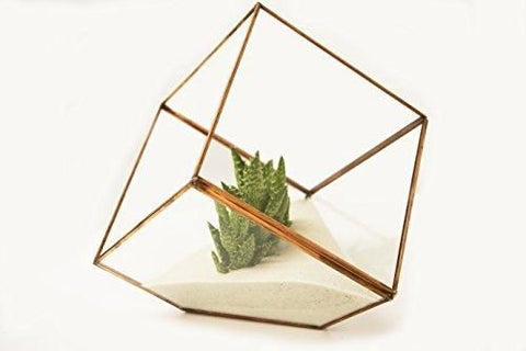 "5.9"" Geometric Planter Glass Terrarium Vase(gold)  JT-T1020- GEO1-3 - Richview Glass Wedding Supplies"