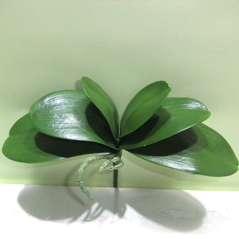 Real Touch Phalaenopsis Orchid leaf for Wedding home decor - Richview Glass Wedding Supplies