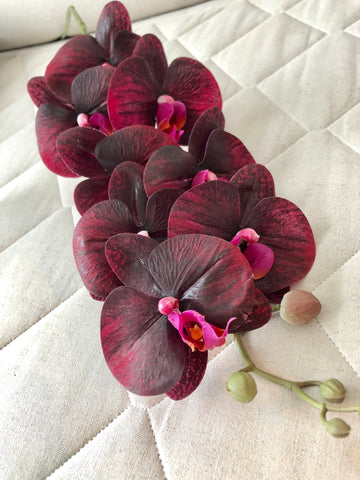 Dark Burgundy/purple PHALAENOPSIS ORCHID real touch