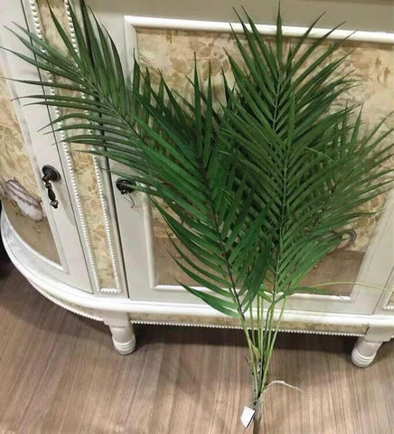 Phoenix palm greenery leaf bunch 6 head