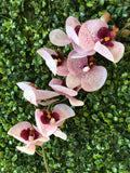 Spotted Pink LARGE REAL TOUCH PHALAENOPSIS ORCHID ARTIFICIAL FLOWER