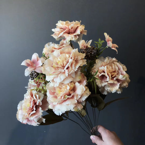 Big stem Carnation Mixed champagne blush