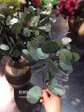 Real touch Eucalyptus for Wedding home decor Silver Dollar