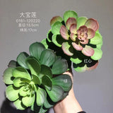 Real Touch Succulent artificial flower leaf wedding greenery 0181-120220  (bush)-REA-6