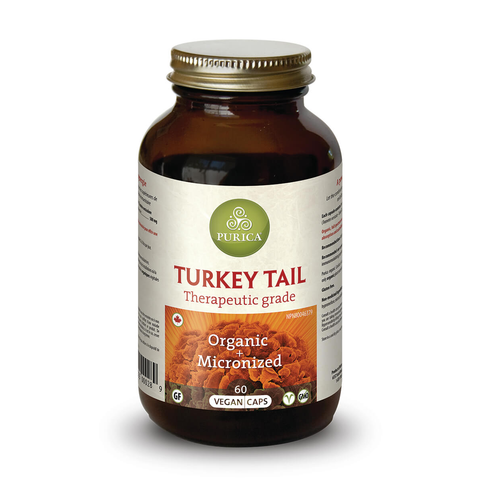 Turkey Tail Anti Infection Support by Purica (60 Capsules)
