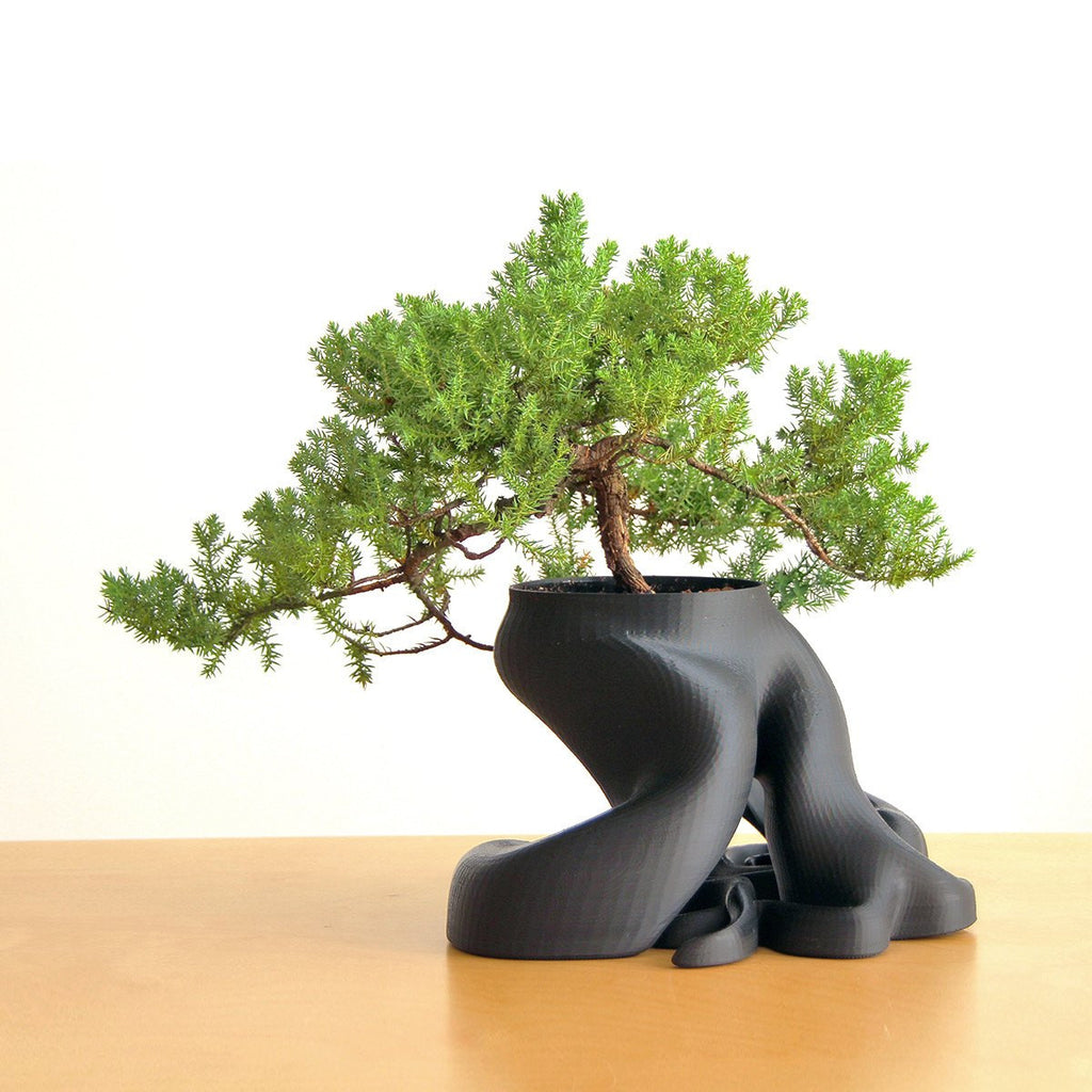 Bonsai Root Planter