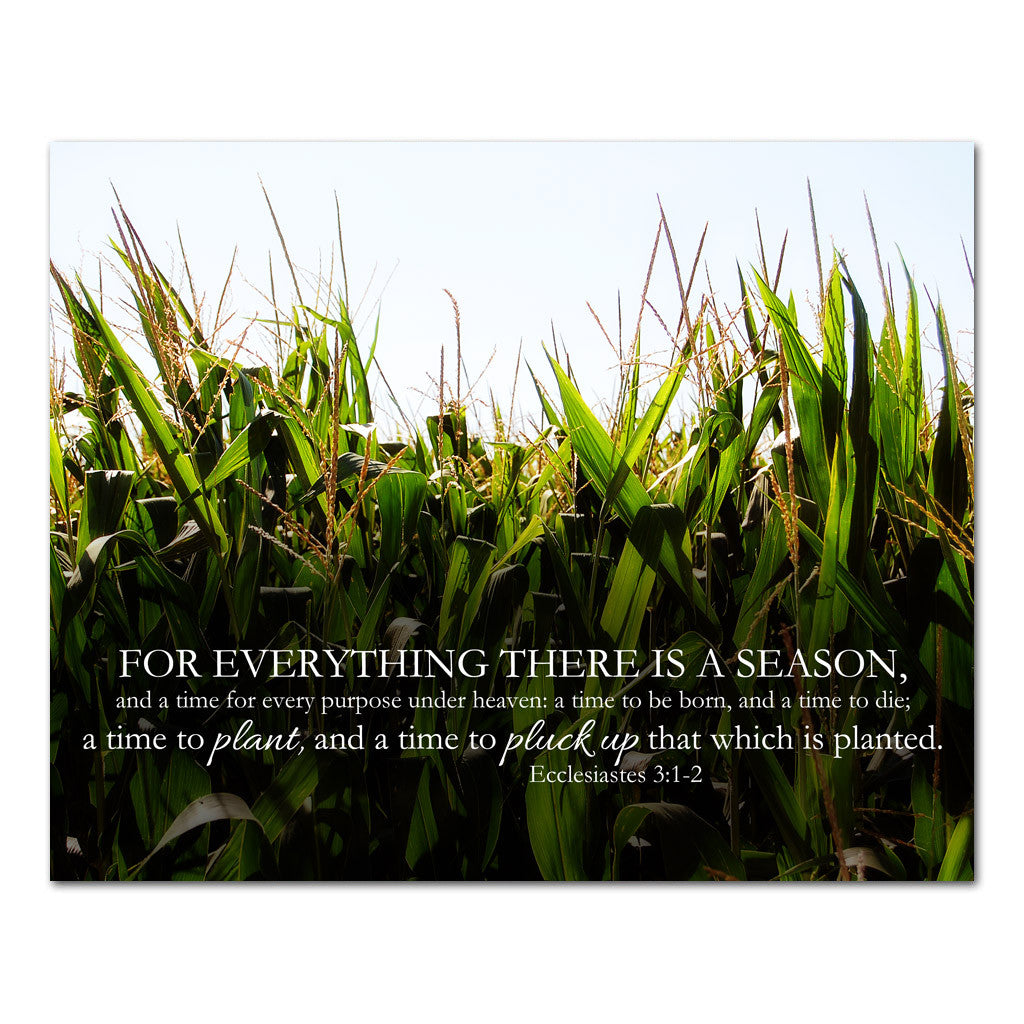 for everything there is a season farming scripture art