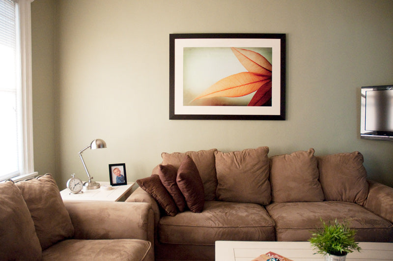 My Nature Print in my Sister's Living Room, carolyncochrane.com
