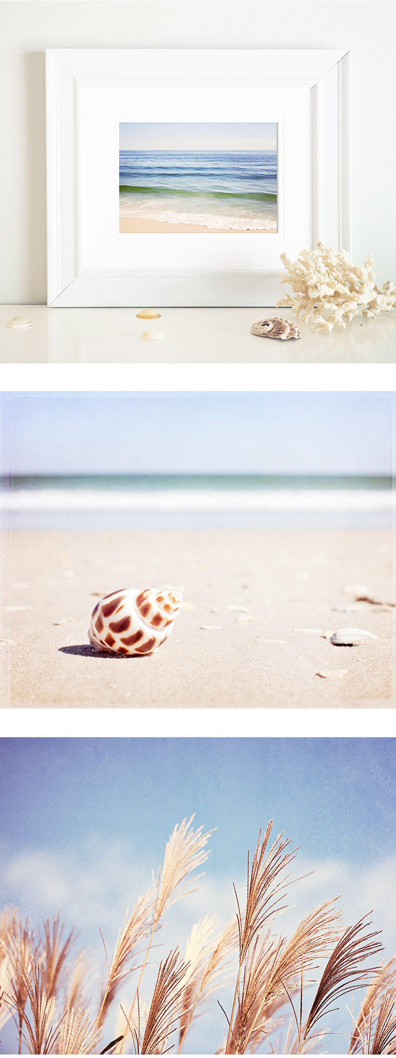 Beach Photography Art Prints by CarolynCochrane.com | Coastal Wall Decor