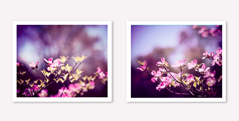 Purple Floral Photography Set by carolyncochrane.com