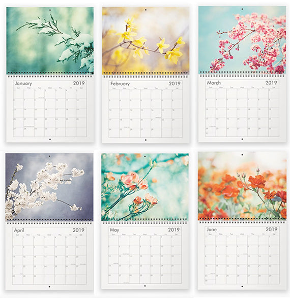 2019 Nature Photography Wall Calendar | Gift for Nature Garden Lover