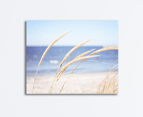 Beach Grass Photography Canvas by carolyncochrane.com