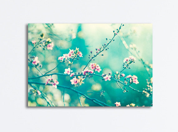 Teal Pink Nature Photography Canvas by carolyncochrane.com