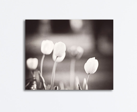 Black and White Tulip Canvas by carolyncochrane.com
