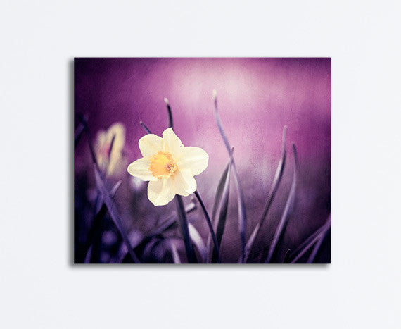 Dark Purple Flower Photography Canvas by carolyncochrane.com