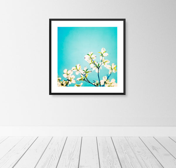 Aqua Blue Nature Art by carolyncochrane.com