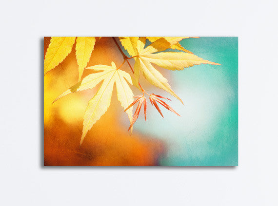 Colorful Autumn Canvas Photography by carolyncochrane.com