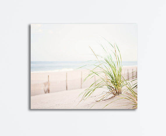 Beach Grass Photography Canvas Art by CarolynCochrane.com