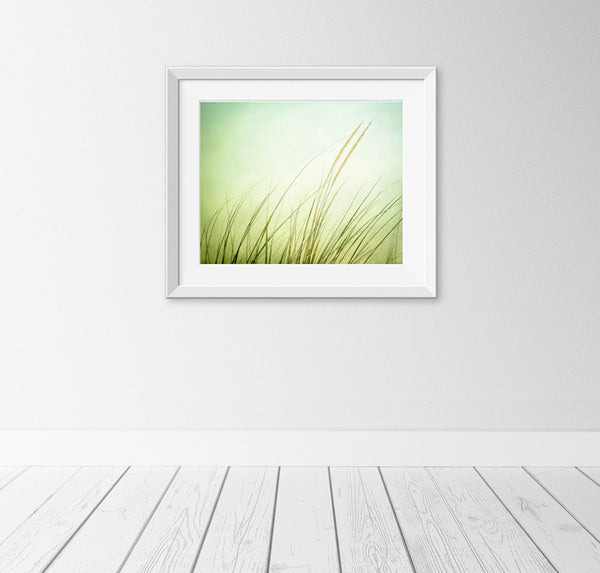 Green Beach Grass Art Photography by carolyncochrane.com