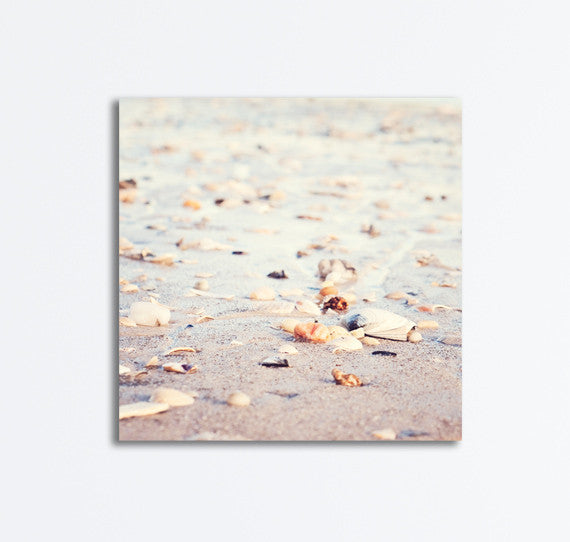 Beach Canvases by carolyncochrane.com