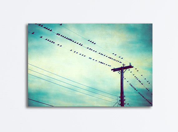 Teal Bird on Wire Canvas Art by carolyncochrane.com