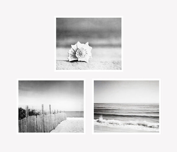 Black and White Beach Photos by carolyncochrane.com
