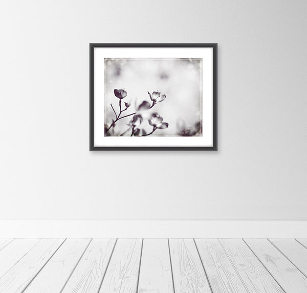 Black and White Floral Art Print by carolyncochrane.com
