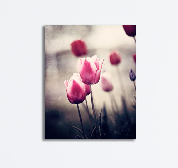 Pink and Brown Tulip Canvas Art by carolyncochrane.com