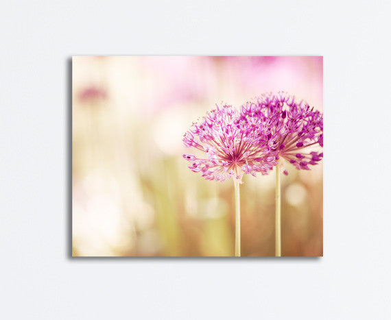 Pink Flower Photography Canvas Art by carolyncochrane.com