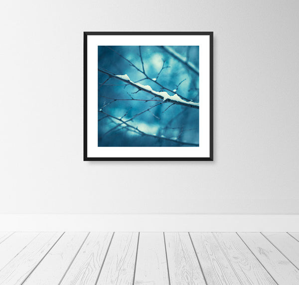 Blue Winter Wall Decor by carolyncochrane.com