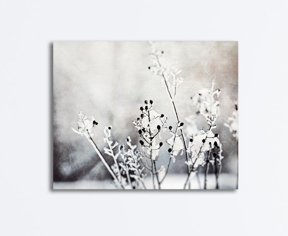 Black and White Winter Photography Canvas by carolyncochrane.com