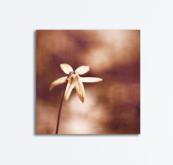 Copper Nature Photography Canvas by carolyncochrane.com
