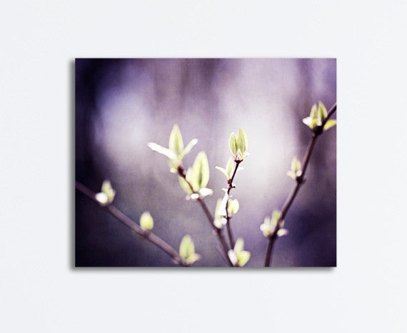 Dark Purple Green Nature Canvas by carolyncochrane.com