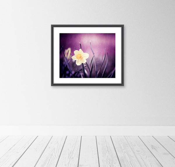 Dark Purple Flower Photography Print by carolyncochrane.com